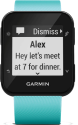 GARMIN Forerunner 35 - GPS Laufuhr - blau