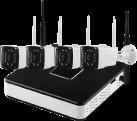 BRAUN NVR400 - sistema di sorveglianza - Risoluzione 1280 x 960 - nero/bianco