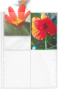 HERMA Fotophan - Custodie trasparenti - 250 Stk. - Bianco/Trasparente