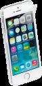 VIVANCO Screen Protector Set - Für iPhone 5/5S/5C - Transparent