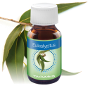 venta 60170 Eucalyptus profumo