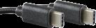 SOFTWARE PYRAMIDE Typ-C Ladekabel - Für Nintendo Switch - 2 m - Schwarz