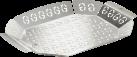 Genius Cestello per griglia XL - Per grill a gas e carbone - Acciaio inossidabile