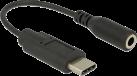 Delock L'Adattatore Audio USB Type-C - Adattatore audio - Jack stereo da 3,5 mm - Nero