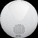ok. OSR 310 - Duschradio - FM - bianco