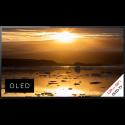 Sony KD55A1BAEP - OLED-TV - 4K-Display 55 (139 cm) - Schwarz
