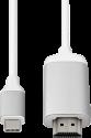 MINIX NEO USB-C zu 4K HDMI Adapter - 60 Hz - Silber