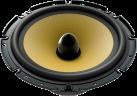 Pioneer TS-E171CI - Système de haut-parleurs - 260 W - noir