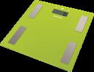SALTER 9150, grün