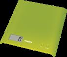 SALTER 1066 GNDR, grün
