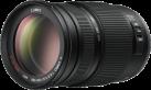 Panasonic Lumix H-FS100300E
