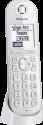 Panasonic KX-TGQ200 - Telefono fisso senza fili - Tempo di conversazione fino a 17.5 ore - Bianco
