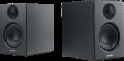 Audio Pro Addon T14 - Lautsprecher - Bluetooth - Schwarz