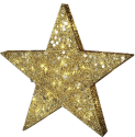 Star Trading SEQUIN STAR - 70x80cm - gold