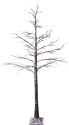Star Trading TOBBY - Baum 210cm - 210x100cm - 124 LEDs - braun mit Schnee-Effekt
