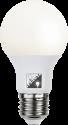 STAR TRADING Ilumination LED, 13 W, E27