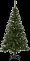 Star Trading Ottawa - sapin de Noël LED -210x120cm - vert