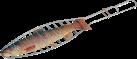 BBQ Dragon 752.4209.00 - Fischbräter - Silber