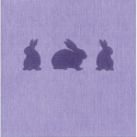 the napkins Box Easter Bunnies, 20er