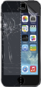 cellularline Ok Display Protector - Pour iPhone 5/5S - Transparent