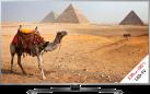 LG 55UH668V, LCD/LED TV, 1200 Hz, silber