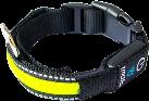 tractive Collare per cani - Taglio S (33-45 cm) - Giallo