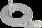 Wirewin - UTP-kabel - 5 m - Grau