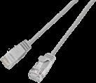 Wirewin - Câble-UTP - 5 m - Gris